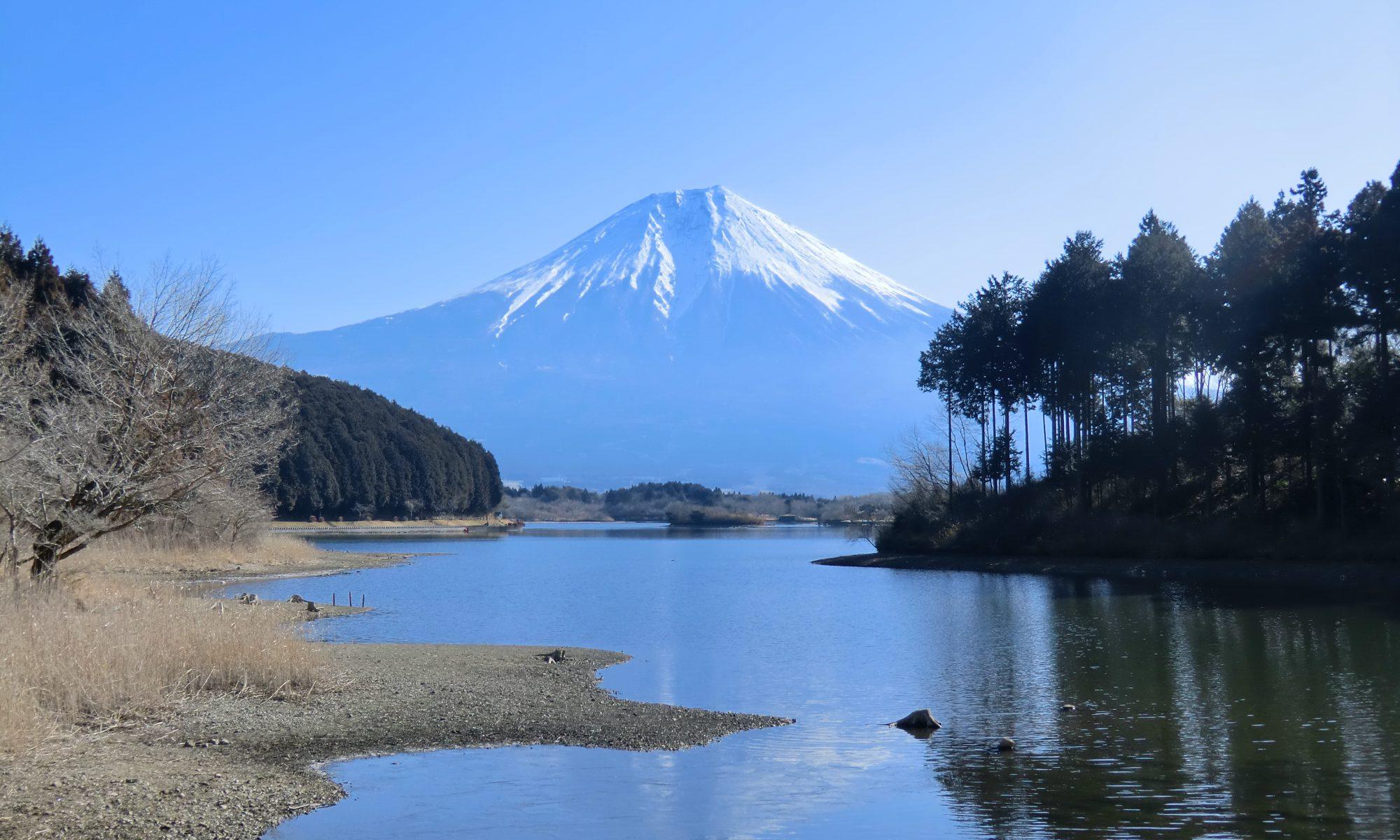 日本環境リハビリテーション科学研究会